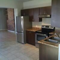 3 Bedroom Townhouse with Fenced Yard and parking