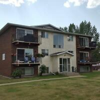 apartment for rent in the millwoods area
