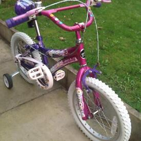 Girls 16 inch bike all in good condition .