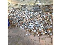 Large assorted coloured pebbles for a pond