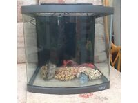 Orca 58 litre bow fronted fish tank