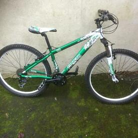 Saracen TT comp mountain bike