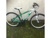 Saracen TT comp mountain bike