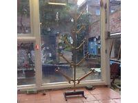Unusual Xmas tree