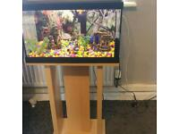 SMALL FISHTANK WITH BEECHWOOD STAND IN EXCELLENT CONDITION