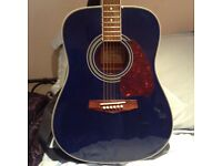 Accoustic Ibanez Guitar,and extras