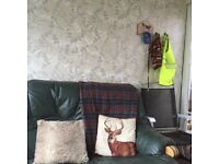 A suite consisting of 2 sofas and a puffe green leather sofas for sale