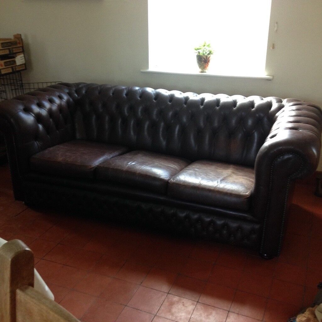 Chesterfield dark brown leather 3 seater sofa | in ...