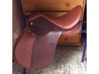 Exselle new saddle