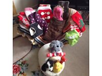 Chihuahua clothes etc dog bed ,toys.