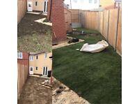 DD Garden Maintenance - Local Independent Gardener - Ipswich