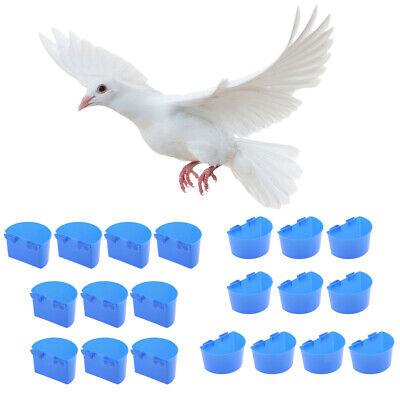 30Pcs Pigeon Cups Quail Parrot Chick Coop Feeder Bowl Plastic Poultry Supplies
