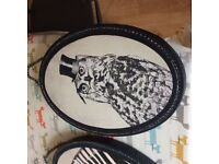 Canvas owl and zebra modern hanging pictures