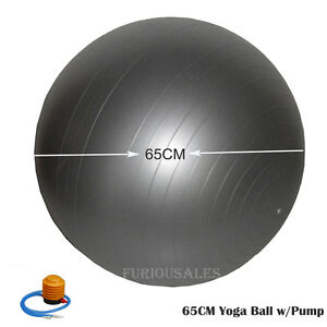 65cm Balance Stability Ball Yoga GYM Fitness Exercise Anti Burst With Air Pump