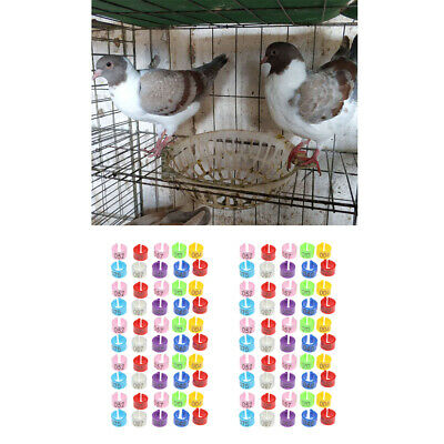 Pack 100 Parrot Pigeon Bird Duck Hen Chicken Leg Band Rings Poultry Foot Clip