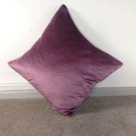 Velvet Amy that cushions with feather interior pillowcase