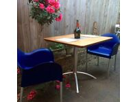Stylish Sleek Ergonomic Kitchen/ Garden Dining Chairs in Royal Blue with Small Design
