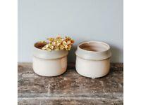 Two Ceramic Mini Planter Pots