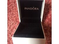 Pandora Charm Boxes