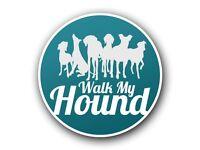 Dog walker - Wadebridge, Rock & surrounding areas