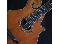 Pilgrim mandolin VPM400