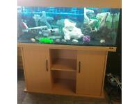 JEWEL RIO 240 LITRES FISHTANK WITH BEECHWOOD CABINET IN EXCELLENT CONDITION+EXTERNAL FILTER