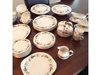 Vintage Royal Doulton Larchmont dinner service/set