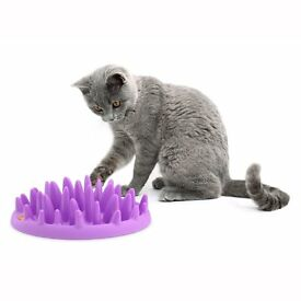 INTERACTIVE CAT FEEDER