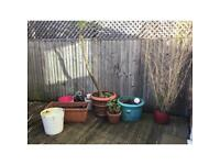 Selection of Pots 6 large 3 plastic for over a balcony and 8 small pots grab a bargain all £30