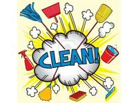 Cleaner / Ironing available