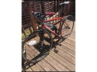 Specialized Langer Medium fixie Road Bike