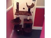 Cat scratching activity post. Large