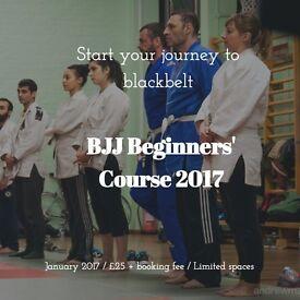 Martial Arts Course 2017