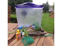 Small plastic fish tank and accessories