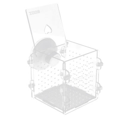 Fry Fish Tank Acrylic Divider Aquarium Isolation Box with Suction Cup