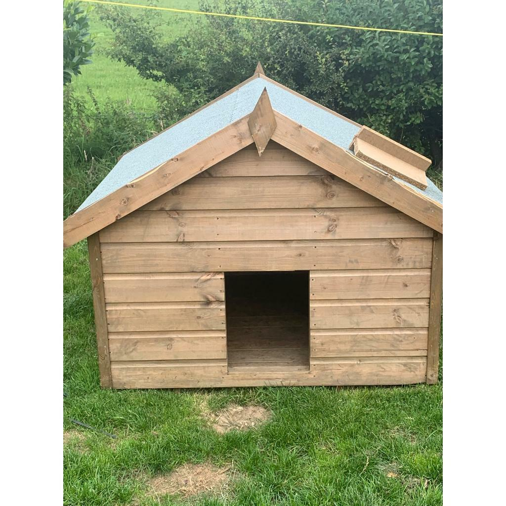 Dog Kennel In North Cornelly Bridgend Gumtree