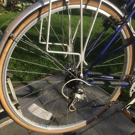 Dawes Galaxy Cycle with Mixte Frame
