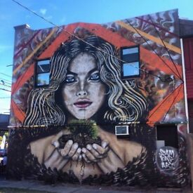 Professional Mural Artist for hire. High quality painting, graffiti and mural art.