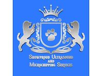 Showproud Ultrasound, and Microchipping Services