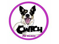 Cwtch Dog Walking and Pet Services