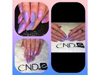 Nail technician CND SHELLAC MANICURE & GELISH ACRYLIC DIP ENHANCEMENTS - OFFER