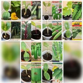 East Asian Vegetable Plants £2.50 Each