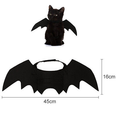 Katze Fledermausflügel Haustier Cosplay Kleidung Kostüm Halloween Festival
