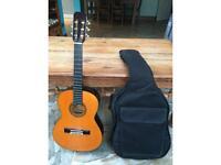 Junior Guitar Aria Model AK