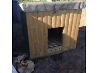 Quality large dog kennel