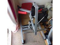 Life Fitness / Hammer Strengh Calf Machine