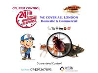 Pest vermin control Mouse Rat wasps Bedbugs Mice Cockroaches extermination pest insect removal