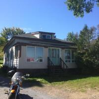 4 bdrm house, 737 Bay St. (West)