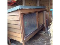 Good sized rabbit hutch