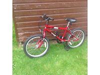 Dunlop Sport Ace Kids Bike
